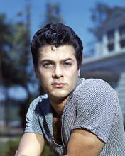 This is an image of Prints & Posters of Tony Curtis 298921