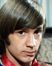 This is an image of Prints & Posters of Peter Tork 298953