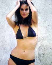 This is an image of Prints & Posters of Lesley Ann Warren 299013