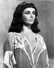 This is an image of Prints & Posters of Elizabeth Taylor 103397