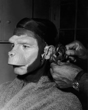 This is an image of Prints & Posters of Roddy McDowall 103289
