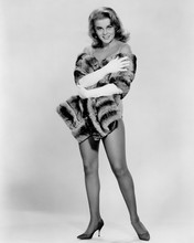 This is an image of Prints & Posters of Ann-Margret 103465