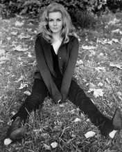 This is an image of Prints & Posters of Ann-Margret 103449
