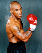 This is an image of Prints & Posters of Mike Tyson 299157