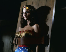 This is an image of Prints & Posters of Lynda Carter 299205