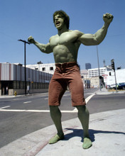 This is an image of Prints & Posters of Lou Ferrigno 299266