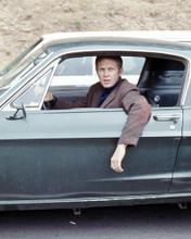 This is an image of Prints & Posters of Steve McQueen 299274