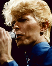 This is an image of Prints & Posters of David Bowie 299482