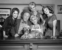 This is an image of Prints & Posters of Petticoat Junction 103501