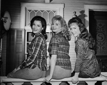 This is an image of Prints & Posters of Petticoat Junction 103524