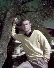 This is an image of Prints & Posters of Tab Hunter 299299