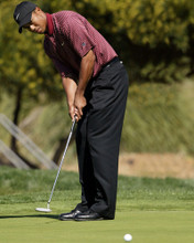 This is an image of Prints & Posters of Tiger Woods 299366