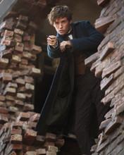 This is an image of Prints & Posters of Eddie Redmayne 299566