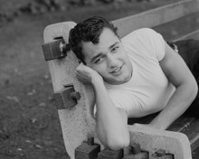 This is an image of Prints & Posters of Sal Mineo 103722
