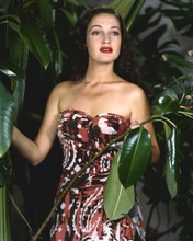 This is an image of Prints & Posters of Dorothy Lamour 299740