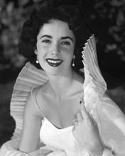 This is an image of Prints & Posters of Elizabeth Taylor 103684
