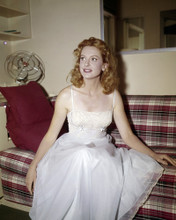 This is an image of Prints & Posters of Deborah Kerr 299627