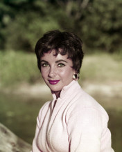This is an image of Prints & Posters of Elizabeth Taylor 299630