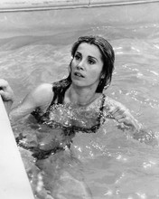 This is an image of Prints & Posters of Stefanie Powers 103693