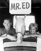 This is an image of Prints & Posters of Mr.Ed 100830
