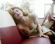 This is an image of Prints & Posters of Tina Louise 299824