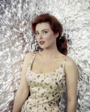 This is an image of Prints & Posters of Tina Louise 299825
