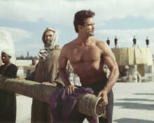 This is an image of Prints & Posters of Steve Reeves 201120