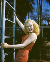 This is an image of Prints & Posters of June Haver 201074