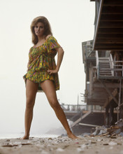 This is an image of Prints & Posters of Raquel Welch 201113