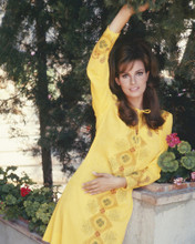 This is an image of Prints & Posters of Raquel Welch 299924