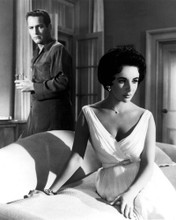 This is an image of Prints & Posters of Cat on a Hot Tin Roof 103931