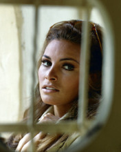This is an image of Prints & Posters of Raquel Welch 201394