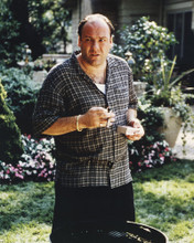 This is an image of Prints & Posters of James Gandolfini 201365