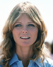 This is an image of Prints & Posters of Cheryl Tiegs 201546