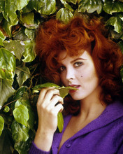 This is an image of Prints & Posters of Tina Louise 201592