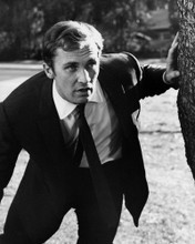This is an image of Prints & Posters of Roy Thinnes 104113