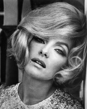 This is an image of Prints & Posters of Virna Lisi 104124