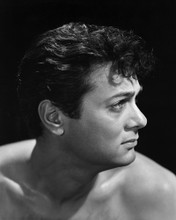 This is an image of Prints & Posters of Tony Curtis 104325