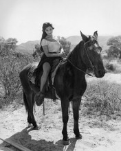 This is an image of Prints & Posters of Linda Cristal 104342