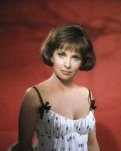 This is an image of Prints & Posters of Gina Lollobrigida 201929