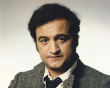 This is an image of Prints & Posters of John Belushi 202096