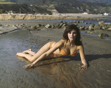 This is an image of Prints & Posters of Raquel Welch 202139