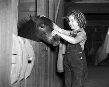 This is an image of Prints & Posters of Shirley Temple 104495
