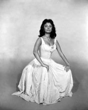 This is an image of Prints & Posters of Sophia Loren 104496
