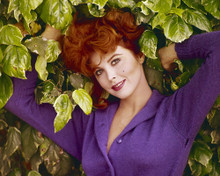 This is an image of Prints & Posters of Tina Louise 202225