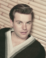 This is an image of Prints & Posters of Robert Wagner 202381