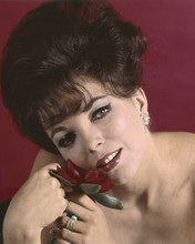 This is an image of Prints & Posters of Joan Collins 202426