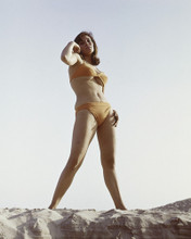 This is an image of Prints & Posters of Raquel Welch 202428