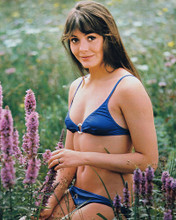This is an image of 2349 Lesley-Anne Down Photograph & Poster