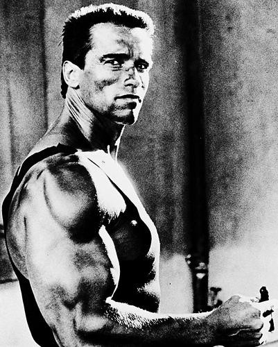 This is an image of 11040 Arnold Schwarzenegger Photograph & Poster